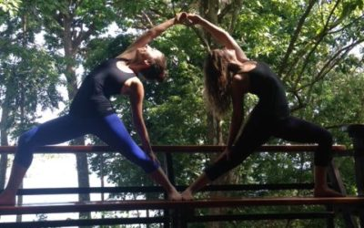 Yoga and Masseuse Work-Trade Offer!