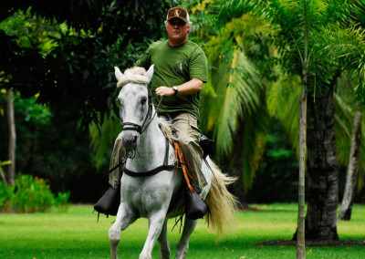 horsebackriding-web